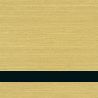 פלטת חריתה זהב מוברש / שחור