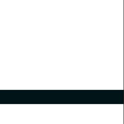 פלטת חריתה לבן / שחור