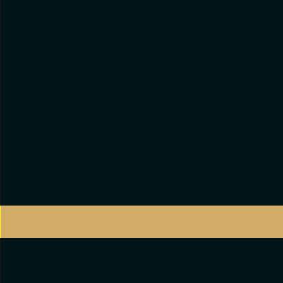 פלטת חריתה שחור / זהב